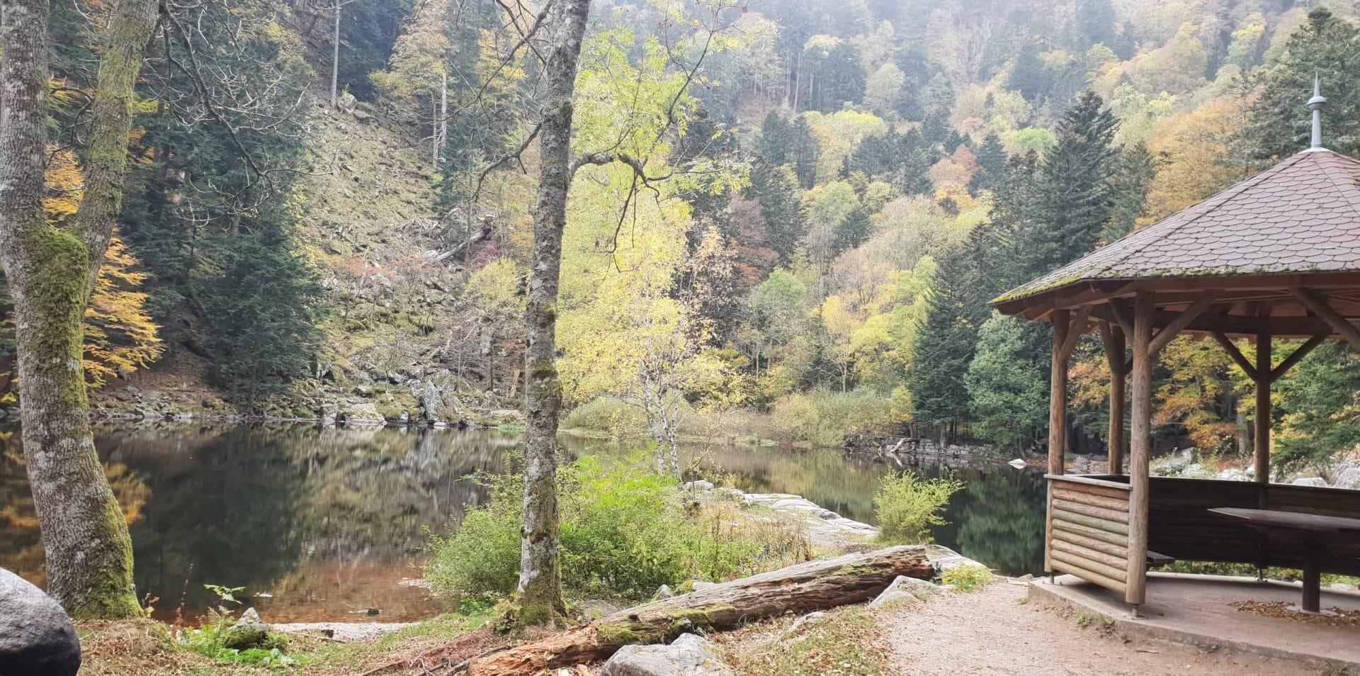 20181024 1408471 1920x954 - Randonnée - Séjour Hôtel Deybach Munster et sa Vallée  par les couleurs d'automne