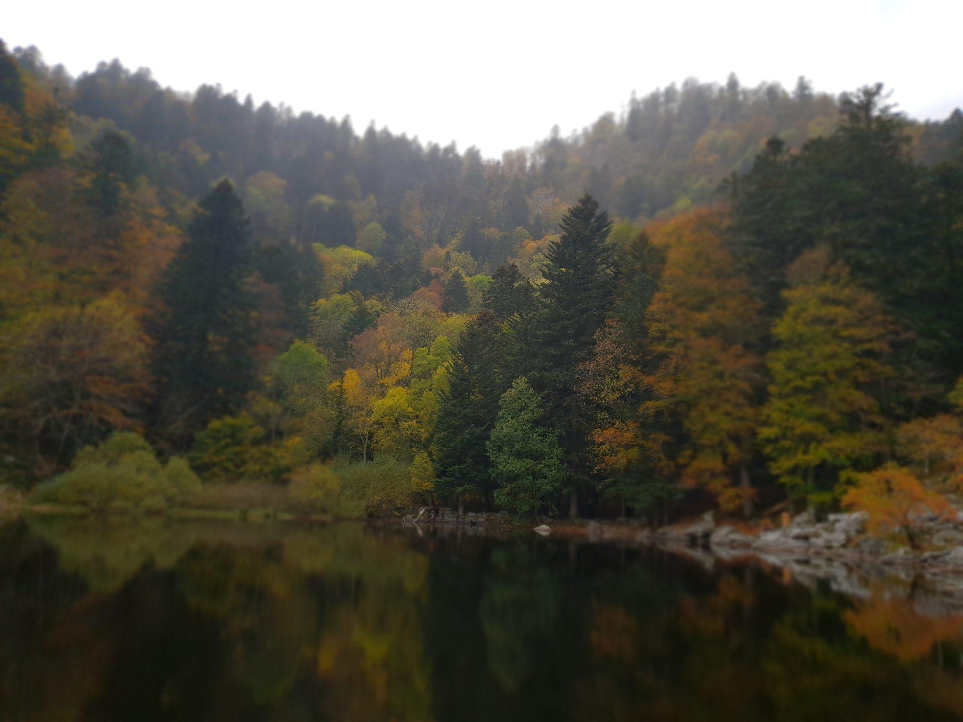20181024 1410501 1920x1440 - Randonnée - Séjour Hôtel Deybach Munster et sa Vallée  par les couleurs d'automne