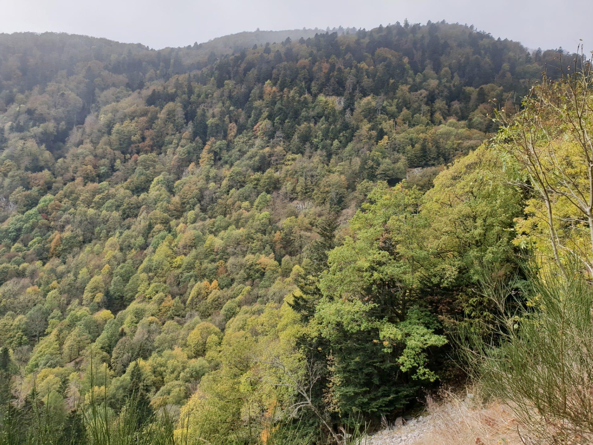 20181024 1428511 1920x1440 - Randonnée - Séjour Hôtel Deybach Munster et sa Vallée  par les couleurs d'automne