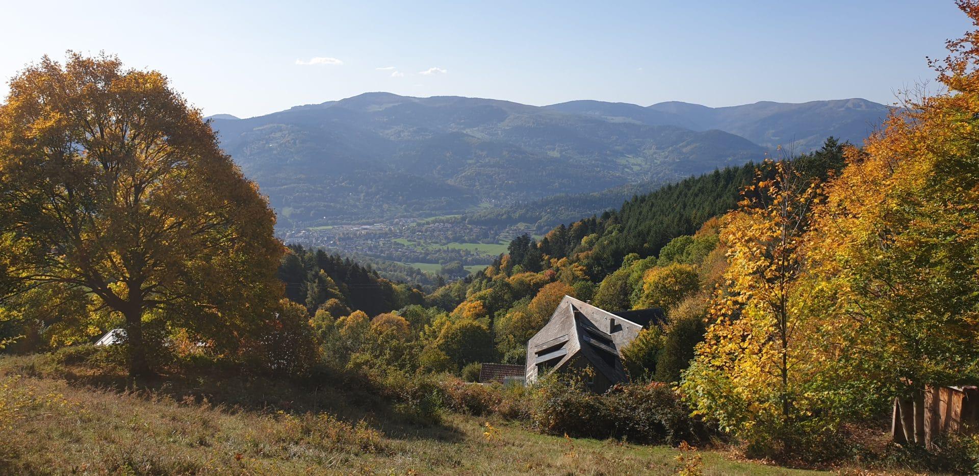 20191014 111600 1920x933 - Randonnée Col du Linge  Munster Vosges Alsace