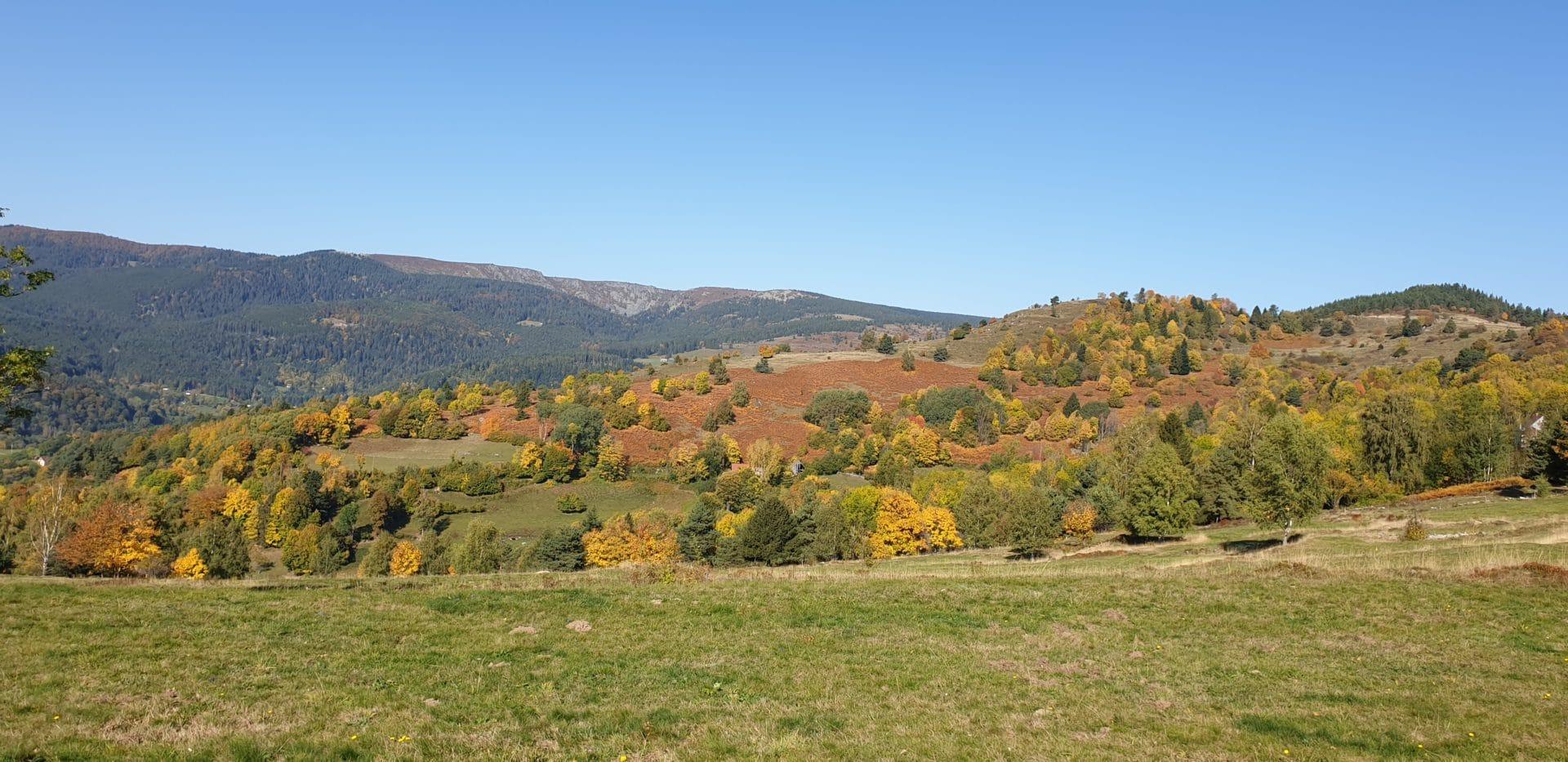 20191014 114721 1920x933 - Randonnée Col du Linge  Munster Vosges Alsace